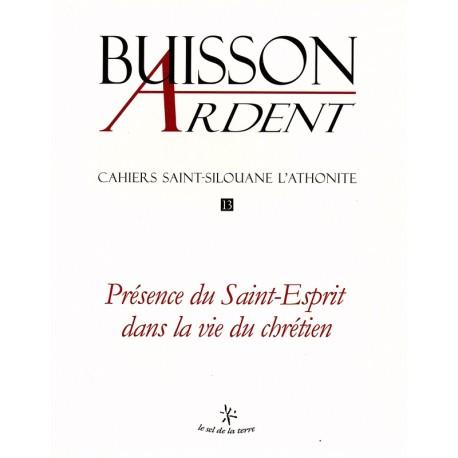 Présence du Saint-Esprit dans la vie du chrétien - Buisson Ardent n° 13