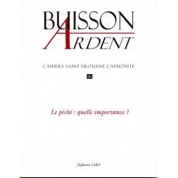 Le péché : quelle importance - Buisson Ardent n° 16