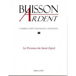 La Personne du Saint-Esprit - Buisson Ardent n° 18