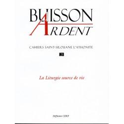 La liturgie source de vie - Buisson Ardent n° 21